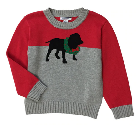 Boys' Holiday Sweater